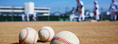 好きなスポーツ 野球