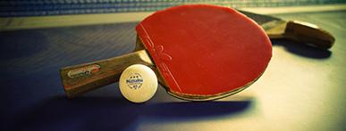 好きなスポーツ 卓球